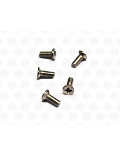 Countersunk Head s/s screws V Head S/S Bolts for VW split screen Pop Out Window hinge