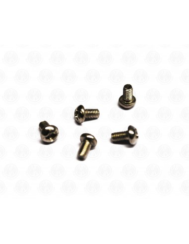 Stainless Steel Dome Head screws /Bolts for VW Spilts screen bus Pop Out window hinge