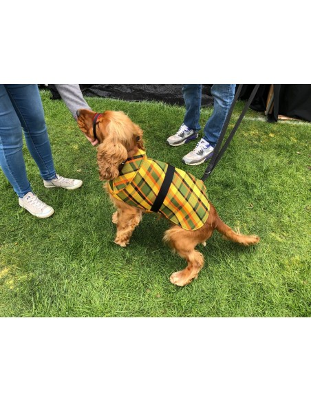 NLA Westfalia green plain material dog coat double sided with waterproof layer inside large